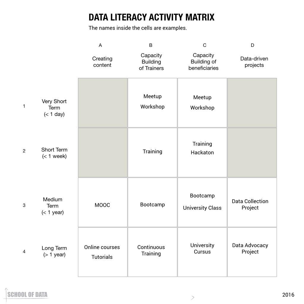 Data Literacy Activity Matrix